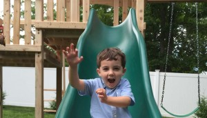 Cedar Playsets with Slides